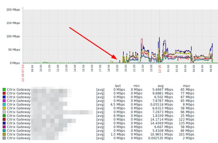Citrix ADC DDoS Attack